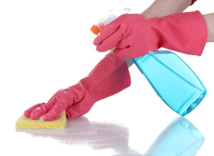Cleaning Services in Mount Pleasant